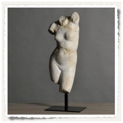 Buste Venus