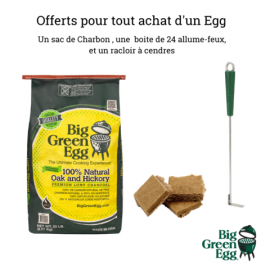 PACK BIG GREEN EGG START EXTRA LARGE SUR CHARIOT ROULETTES